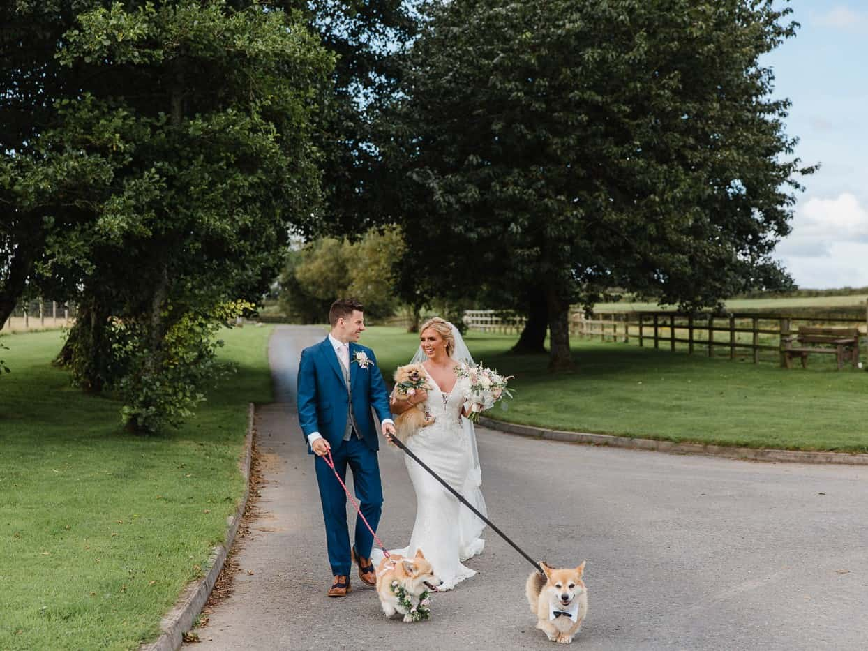 bride and groom with dogs oldwalls wedding